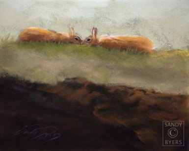 "High Bunnies SOLD (11x14 dry pastel). These two bunnies were ""dancing"" outside my studio window. I feel fortunate to have captured their embrace just before they jumped about two feet in the air and scurried off chasing each other around in circles again. The wild rabbits that visit us are such a wonderful, playful, source of entertainment!"