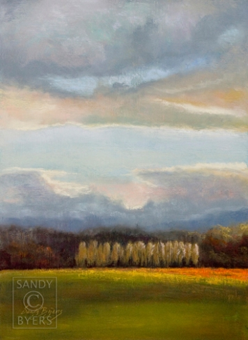 Orange Tulip Sky SOLD (18x12 dry pastel). Another scene from one of my favorite places in the world ~ the Skagit Valley (WA). During tulip season I can be found dashing from farm to farm trying to capture the perfect painting.