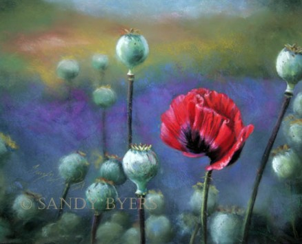 Poppies in the Lavender Field SOLD (11x14 pastel on board). lavender wind farm on Whidbey Island.