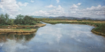 Skagit Valley Sky Stories SOLD (12x24 dry pastel). where the trumpeter swans fill winter skies.